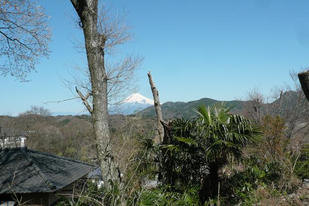 富士山が見える物件①