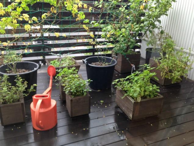 木の鉢植えカバーと赤いジョウロ