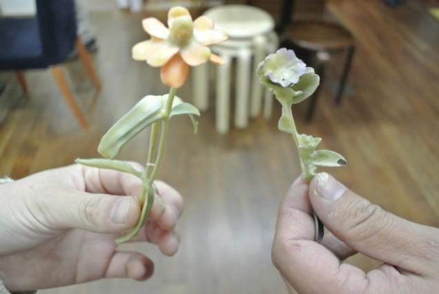 花 ティッピング 蜜蠟