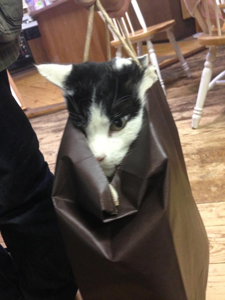 チビ紙袋3