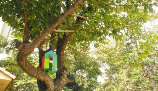 【夏休み木工作イベント】巣箱を作ろう 8月19日